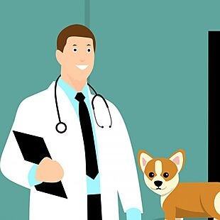 PetPartners Pet Health Insurance deals