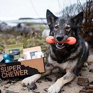 Super Chewer deals