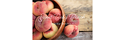 Sweet Baby Peach Boutique Coupons and Deals